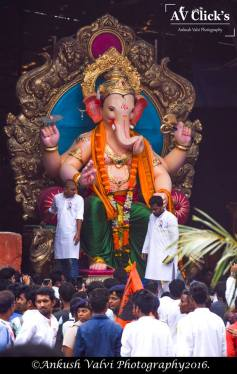 Khetwadi 13th Galli Ganpati 2016 1 no-watermark