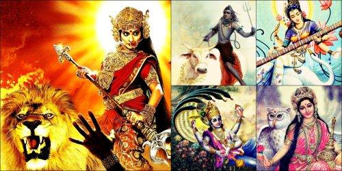 Divine Vehicles of Gods Goddesses