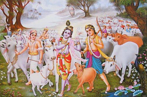 Krishna cowherd