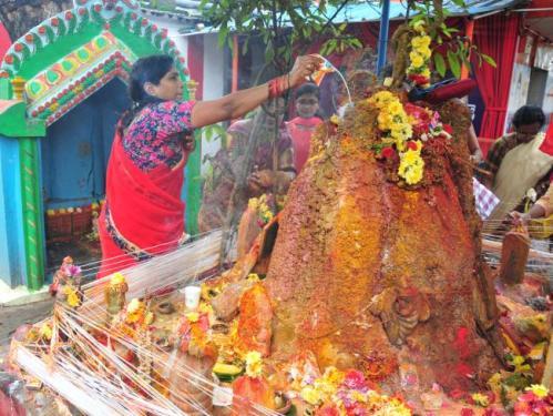 Offering of Milk in snake burrows Nagula chavithi nagula panchami