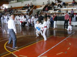 Hinode_karate_kazincbarcika_2014_001029
