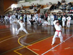Hinode_karate_kazincbarcika_2014_001030