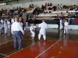 Hinode_karate_kazincbarcika_2014_001048