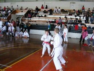 Hinode_karate_kazincbarcika_2014_001050