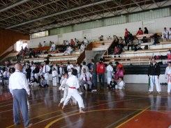 Hinode_karate_kazincbarcika_2014_001051