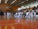 Hinode_karate_kazincbarcika_2014_001077