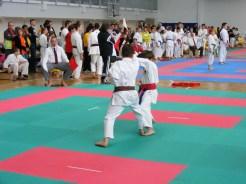 hinode_karate_torokbálint_jka_2014_054