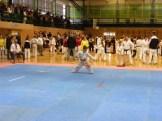 Hinode_IpponShobu_karate_2014_06