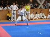 hinode_karate_atarashi_2014_40