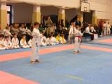 Hinode_karate_fujinaga_2014_015