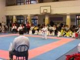 Hinode_karate_fujinaga_2014_017