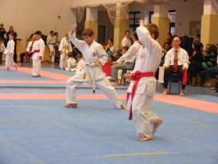 Hinode_karate_fujinaga_2014_022