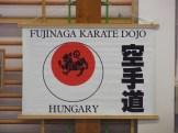 Hinode_karate_fujinaga_2014_042