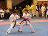 Hinode_karate_fujinaga_2014_060