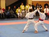 Hinode_karate_fujinaga_2014_063