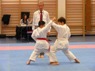 Hinode_karate_fujinaga_2014_068