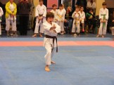 Hinode_karate_fujinaga_2014_084
