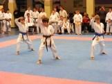 Hinode_karate_fujinaga_2014_103