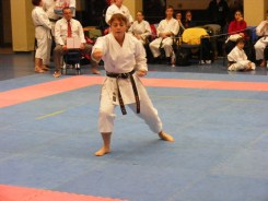 Hinode_karate_fujinaga_2014_111
