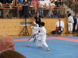 hinode_karate_diakolimpia_2015_30