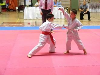 Hinode_karate_SKI_2015_Szerencs_10