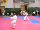 Hinode_karate_SKI_2015_Szerencs_13
