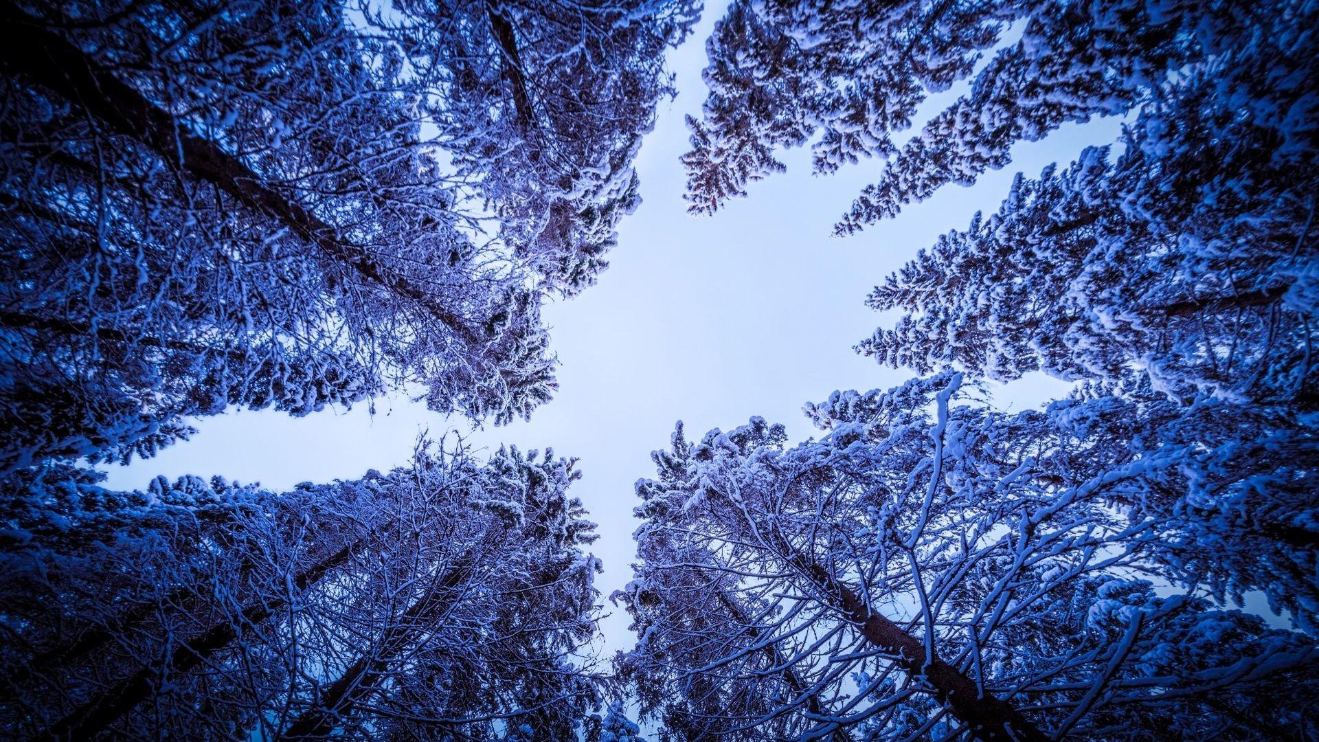 Iphone X See Through Wallpaper Hd Die 72 Besten Schnee Hintergrundbilder