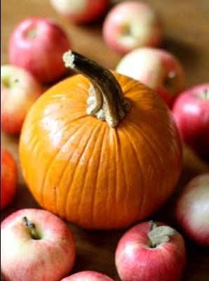 Apple & Pumpkin Time!