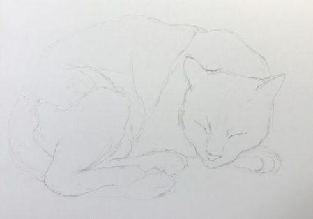 ペン画 猫 あたり