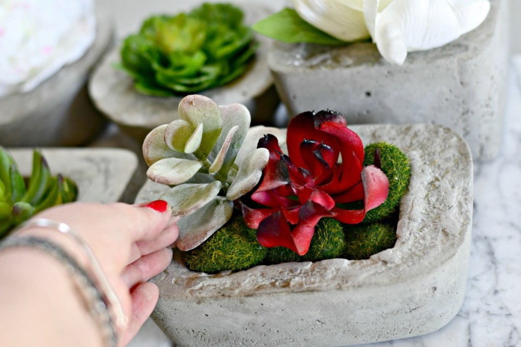 dollar tree moss rocks and succulents inside a DIY concrete planter