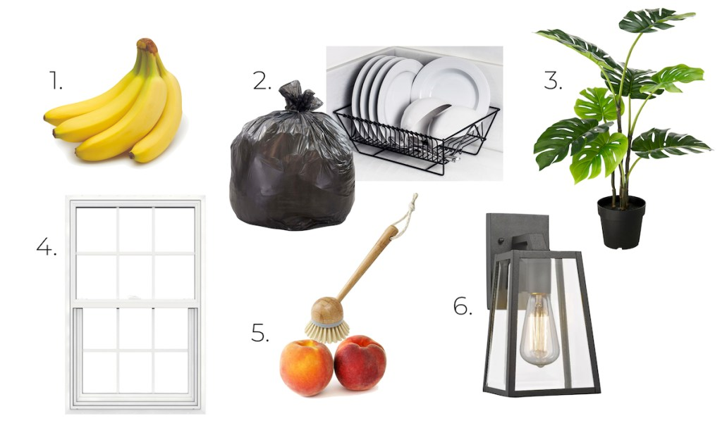 bananas trash dishes green plant white window peaches brush light with white background