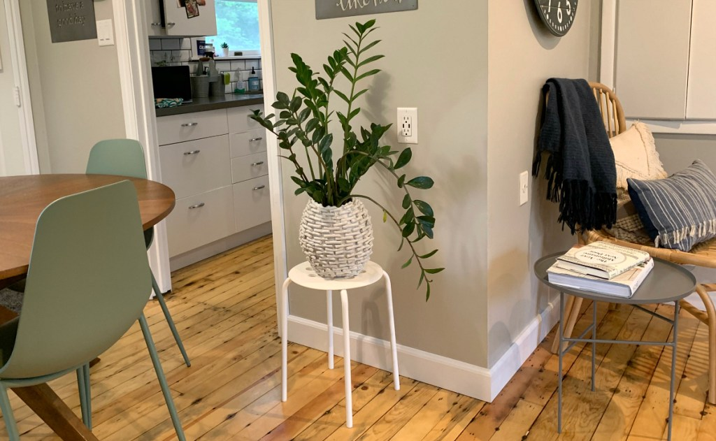 white stool with plant sitting in room on wood floor