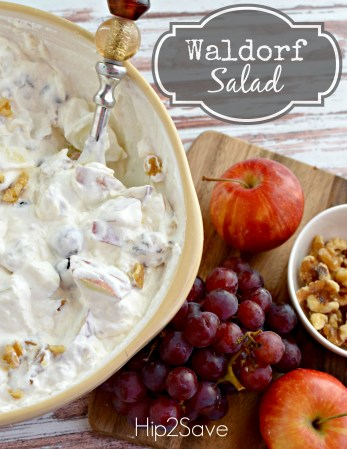 Waldorf Salad Recipe Hip2Save