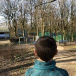 Back of boy's head as he looks at trees and treetop trek infant of him
