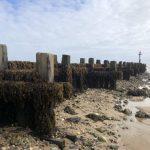 Sea defence on West Runton beach