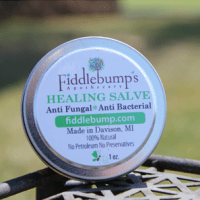 Fiddlebumps {Giveaway}