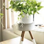 Diy Concrete Plant Stand How To Create A Plant Stand