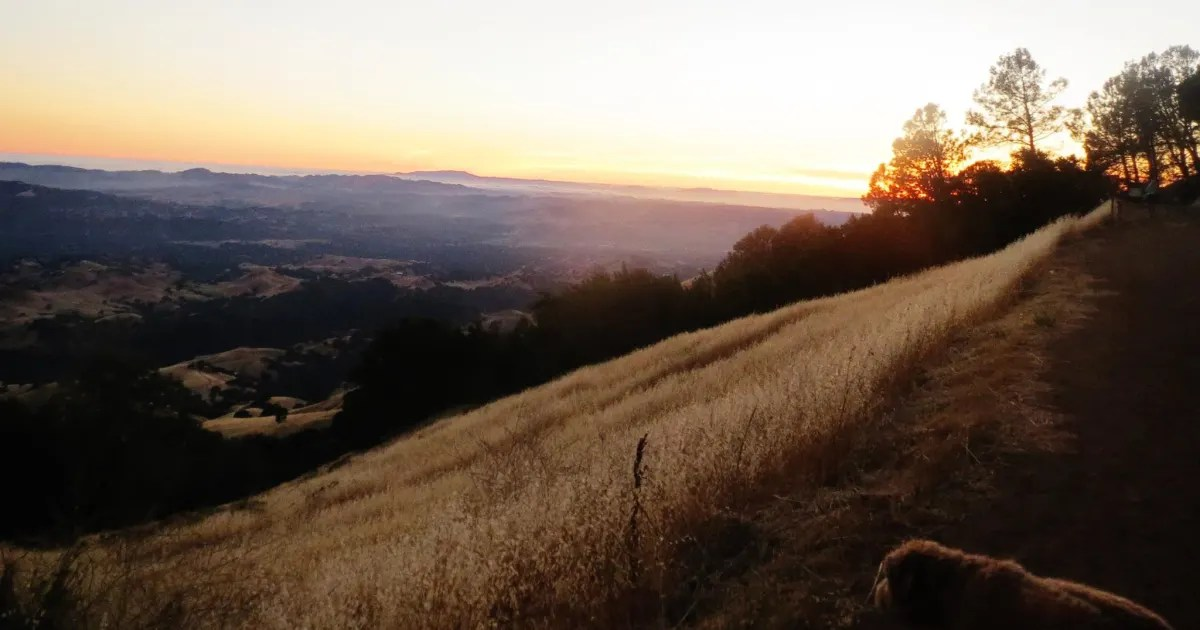 From beautiful beaches to majestic mountains, here's the best state park in every state across the united states. Juniper And Live Oak Campground Mount Diablo Ca 11 Hipcamper Reviews And 39 Photos