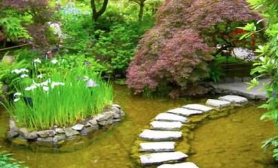 Modelos de jardins (8)