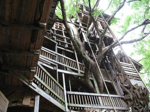 Casa-árbol obra de Horace Burgess's