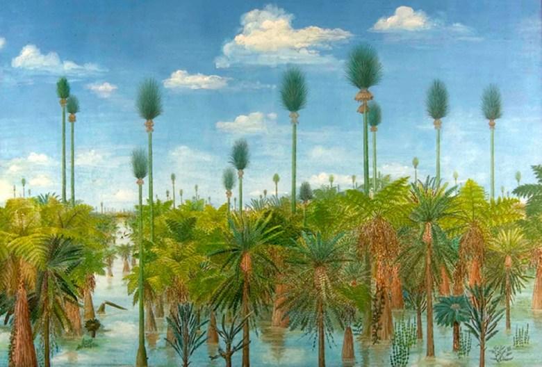 Bosque China Prehistoria