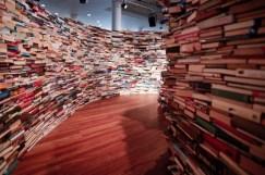 Laberinto de libros 2