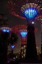 Singapur superárboles 10
