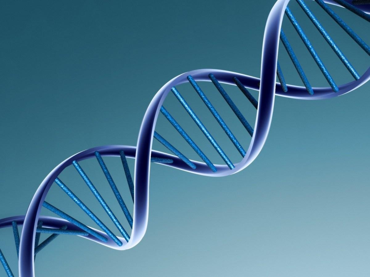 ADN para el almacenamiento de datos, una realidad tras alcanzar el 99,9% de exactitud