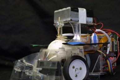 Polilla Robot