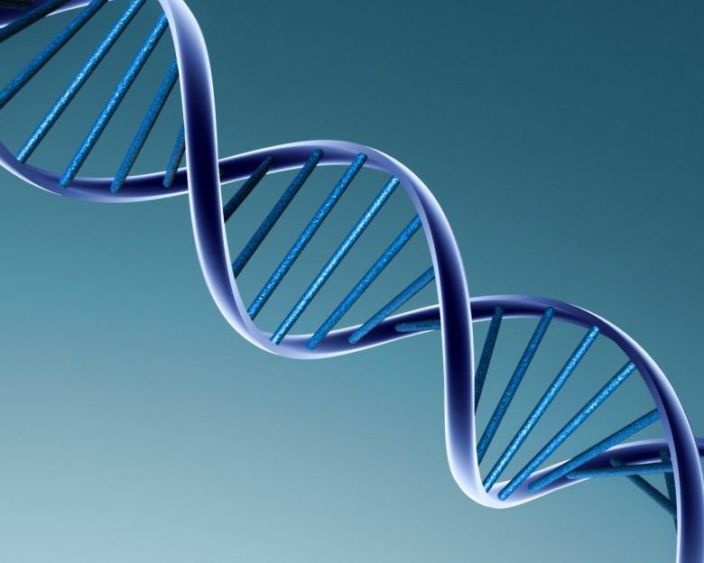 Este gen Neandertal detona la diabetes en los latinoamericanos
