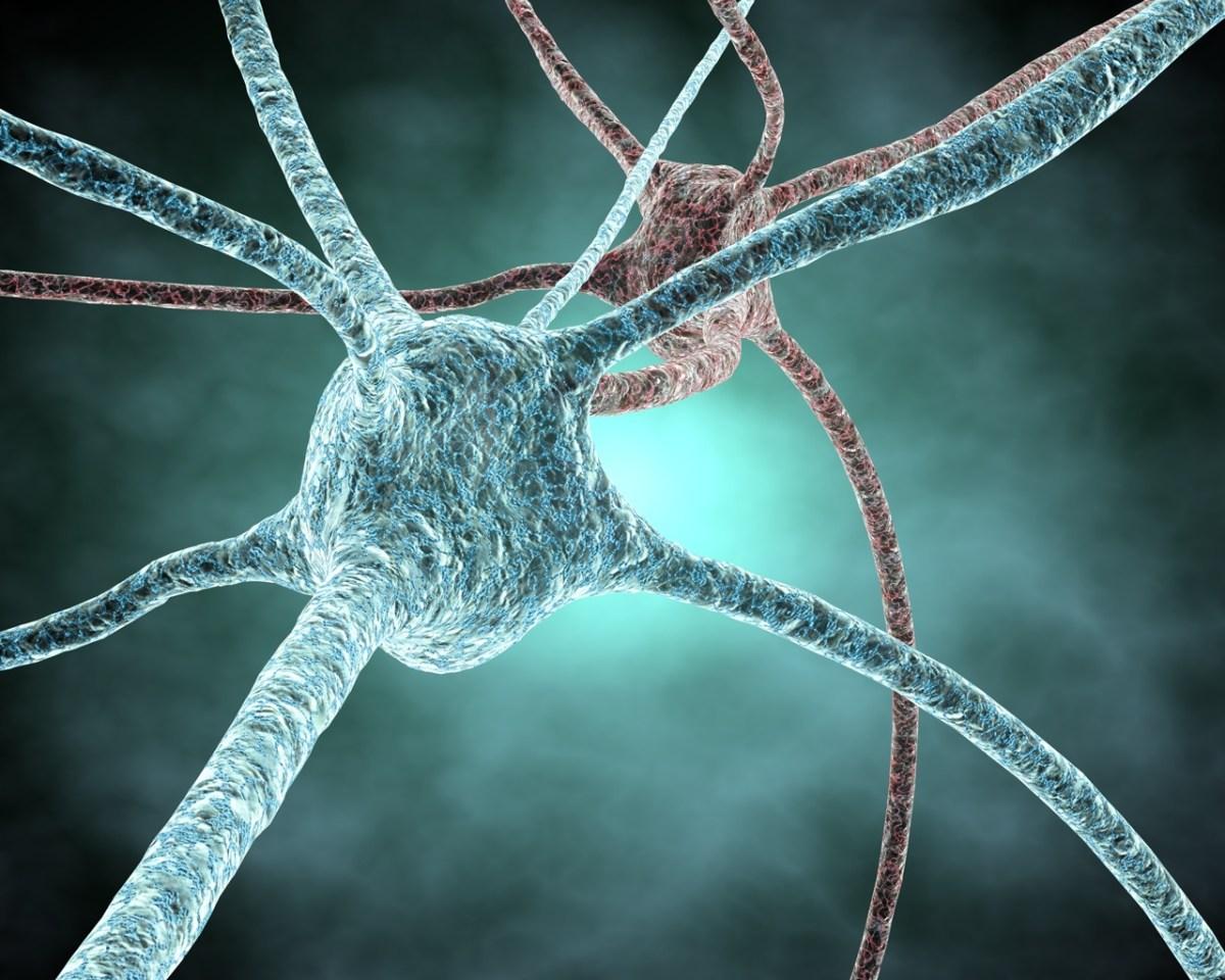 Sensores del cerebro