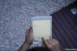 iPad Air mini 015