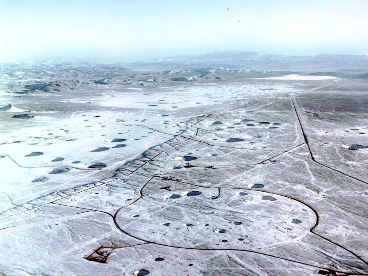 llanura de Yucca