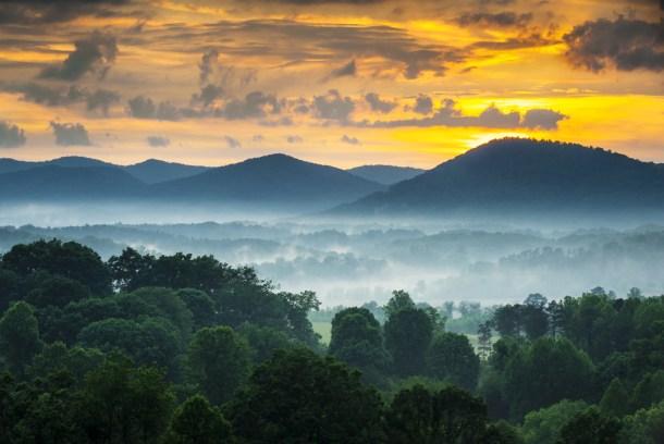 Dave Allen Photography   Shutterstock